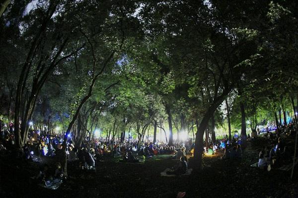 Picnic_nocturno_Chapultepec_-3