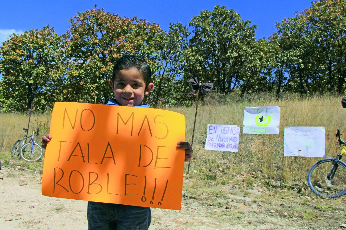 Protesta de vecinos del Nixticuil por la tala de arboles para construir fraccionamiento. Foto: Héctor Jesús Hernández