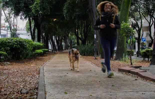 vida_cotidiana_corredoressanoos-1-1