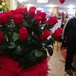 MƒXICO, D.F., 13FEBRERO2010.- La venta de flores previo al D'a del Amor y la Amistad es baja, se quejaron los comerciantes del mercado de flores de Luis Moya, en el centro de la ciudad. FOTO: ISAAC ESQUIVEL/CUARTOSCURO.COM