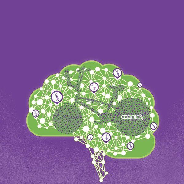 Investigadores del IPN desarrollaron una plataforma para mejorar la distribución de Ecobicis. Arte, Andree Ávalos
